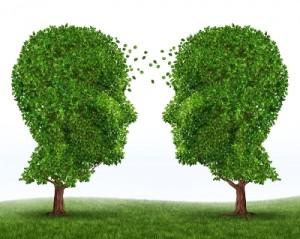 Image: Training Trees